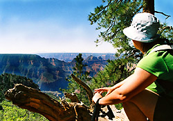 Overlooking Grand Canyon's North Rim, Arizona (Photo: Josh Roberts)