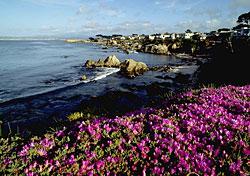 Monterey, California (Photo: Robert Holmes/CalTour)
