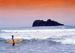 Surfer at Punta Cocles (Photo: Costa Rica Tourist Board)
