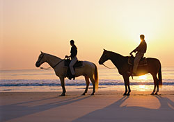 Horses on beach, Amelia Island, Florida (Photo: Amelia Island Tourist Development Council)