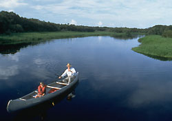 Canoeing at Myakka River State Park (Photo: Sarasota Conventions and Visitors Bureau)