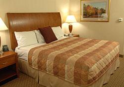 Hilton Garden Inn bed (Photo: Hilton Hotels Corporation)