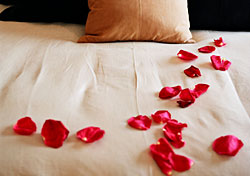 Hotel bed with rose petals (Photo: Index Open)