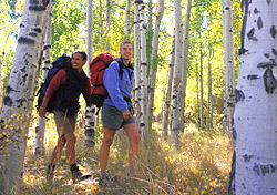 Couple hiking through aspen grove (Photo: IndexOpen)