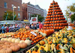 Pumpkins at the Circleville Pumpkin Show (Photo: Circleville Pumpkin Show)