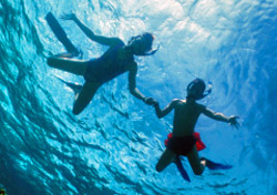 Children snorkeling  (Photo: Tammy Peluso/iStockphoto)