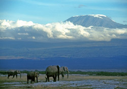 &lt;h2&gt;Kilimanjaro, Tanzania&lt;/h2&gt;