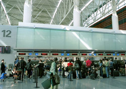 Airport -  Busy check-in area (Photo: San Francisco International Airport)