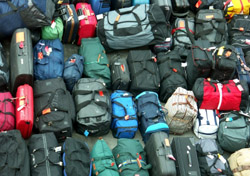 Bags lined up for departure (Photo: iStockphoto/Vera Bogaerts)