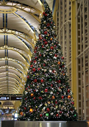 Christmas tree at Washington Reagan Airport (Photo: Chris Johnson/iStockPhoto)