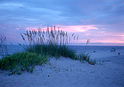 Gulf Shores beach (Photo: Alabama Gulf Coast Convention & Visitors Bureau)