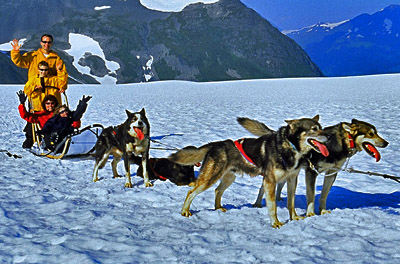 Dogsledding in Anchorage, Anchorage, Alaska