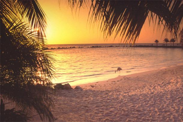 Aruba Beach at Sunset (Photo: iStockPhoto/Denis Jr. Tangney)
