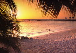 Aruba Beach at Sunset (Photo: iStockPhoto/Denis Jr. Tangney)