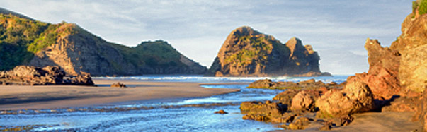 New Zealand-Auckland: Beach (Photo: iStockphoto/Linda & Colin McKie)