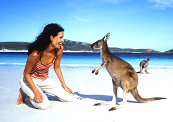 If you're lucky, you may spot kangaroos sunbathing on the beach in Cape Le Grand National Park near the town of Esperance on the southwestern coast of Australia. Esperance is about an eight-hour drive from Perth along the stunning South Coast Highway  (within Zone 3 of the Aussie AirPass). (Photo: Richard Powers, Tourism Australia)
