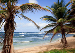 Barbados Beach (Photo: Thinkstock/iStockphoto)