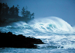 Big wave in Tofino (Photo: Mark Hobson/Wickaninnish Inn)