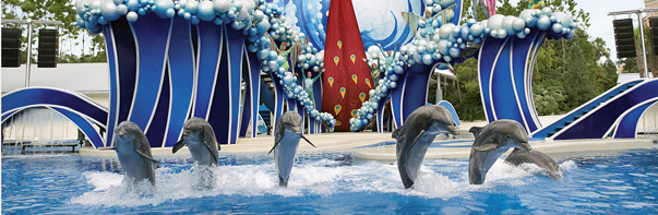 Blue Horizons, SeaWorld San Diego (Photo: SeaWorld San Diego)