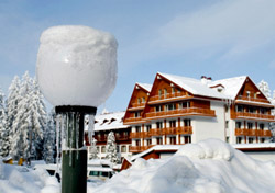 Bulgaria: Frozen Bulb in Front of Lodge (Photo: ThinkStock/iStockphoto)