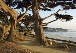 Walking trail, Carmel, CA (Photo: CarmelCalifornia.com)
