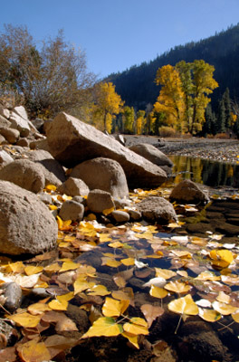 California-Sierra Nevadas