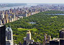 Central Park Birds Eye-DD