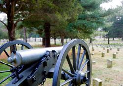Cannon in a field (Photo: iStockphoto/RASimon)