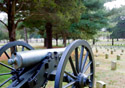 Cannon in a field (Photo: iStockphoto/RASimon)