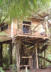 Playa Selva Tree House, Costa Rica (Photo: Courtesy Tiffany &amp; Kurt Smiley)