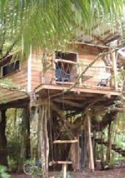 Playa Selva Tree House, Costa Rica (Photo: Courtesy Tiffany & Kurt Smiley)