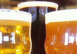 "<p>Beer lovers, rejoice: More than 200 brands of beer—stouts, pale ales, lagers, and more—are available for quaffing at <a href=""http://www.beerfestival.ca/""target=""_blank"">Toronto's Festival of Beer</a>, Canada's largest beer-tasting event. The 12th a"