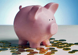 Piggy Bank (Photo: Index Open)