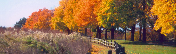 Elsah, Illinois - Fall Colors (Photo Credit: The Alton Regional CVB, Photographer: Bill Ash)