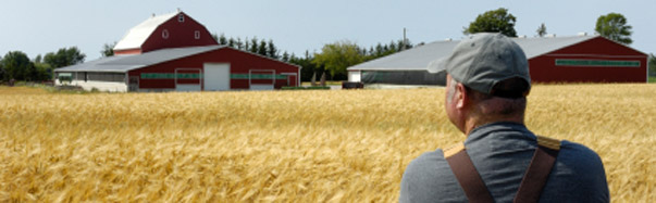 Farmer Staring at Farm