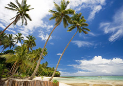 "Just because your money's tight doesn't mean you can't afford a beach vacation to the far-flung hideaway of your dreams. Make an exotic escape a reality with these seven super-affordable resorts in Africa, Asia, and the Pacific.  <h2>Fiji: Mango Bay Resort</h2>  It isn't necessary to shell out hundreds of dollars a night for an upscale South Pacific getaway. <a href=""http://www.mangobayresortfiji.com/"" target=""_blank"">Mango Bay Resort</a> in <a href=""http://www.fijime.com/"" target=""_blank"">Fiji</a> has a fresh take on resorts: It's the island nation's first ""flashpacker,"" an upmarket backbackers' resort located on an enclosed sandy bay on Fiji's main island. You can choose from accommodations ranging from dorm beds (starting at $21 per night) and private safari-style walk-in tents ($109 per night) to a beachfront <em>bure</em> (a Fijian-style bungalow; from $156 per night) and make use of the resort's pool, restaurant, bar, nightclub, and outdoor cinema. In addition, there are plenty of free activities offered, including snorkeling, kayaking, cooking classes, introductory diving classes, and more.  (Photo: Mango Bay Resort)"