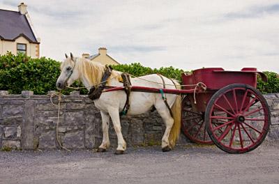 Ireland: Inishmore Horse and Buggy