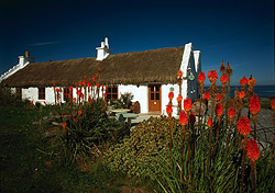 "For many the quintessential symbol of the Irish home and hearth, thatched-roof houses can be found scattered throughout the countryside, particularly in counties Clare, Donegal, and Kerry. You can even forego a hotel and <a href=""http://www.donegalthatchcottages.com/""target=""_blank"">rent your own thatched cottage</a> for your vacation. (Photo: Fáilte Ireland)"