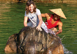Riding elephants in Laos (Photo: BikeHike Adventures)