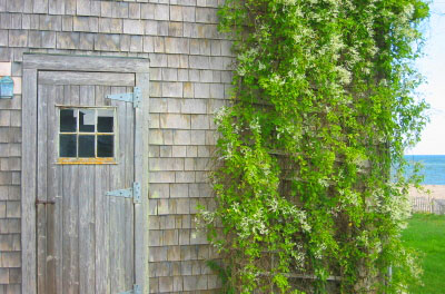 Beach house in Siasconset, Nantucket