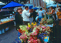 Northampton farmers' market (Photo: Paul Schnaittacher, Greater Northampton Chamber of Commerce)