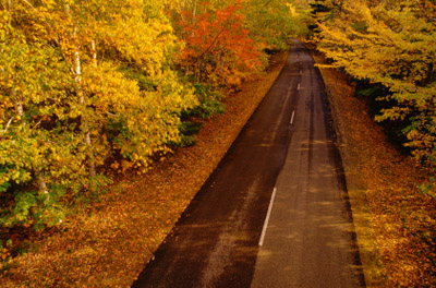 Maine Road in the Fall