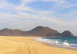 Baja, Mexico, beach scene (Photo: Country Walkers)