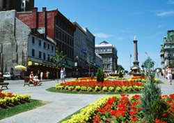 Montreal: Flowers in Place Jacques Cartier (Photo: thinkstock/Photos.com)