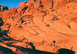 Hiking in Red Rock Canyon National Conservation Area (Photo: Molly Feltner)