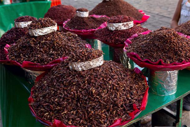 Oaxaca-Hot Peppers