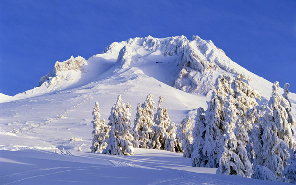 Oregon: Mt. Hood - Palmer Snowfield (Photo: Thinkstock/Comstock Images)