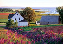 Orwell Cove, Prince Edward Island (Photo: Government of Prince Edward Island)