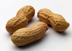 Peanuts (Photo: iStockPhoto/Joe Cicak)
