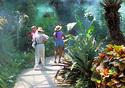 San Antonio's Botanical Garden (Photo: SACVB/Al Rendon)